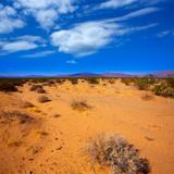 ccd4ee53de5da Crianças loiras feliz turista chapéu de praia menina e óculos de sol ·  Mohave deserto na califórnia yucca valley