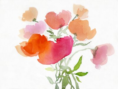 Fotomural Mohnblumen malerei aquarell