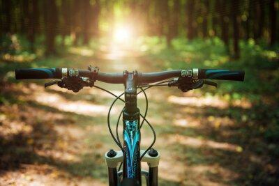 Fotomural Montanha, biking, baixo, colina, descendo, rapidamente, bicicleta Vista de