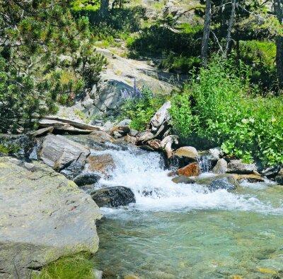 Fotomural Montanha, rio, coniferous, floresta