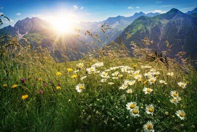 Fotomural Montanhas paisagem em Vorarlberg