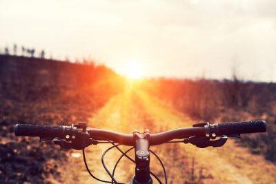 Fotomural Mountain bike down hill descendente rápido na bicicleta. View from