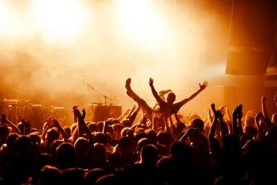 Fotomural Multidão, surfar, durante, concerto