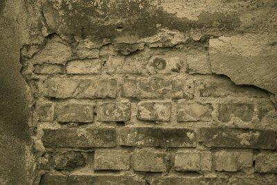 Fotomural mur Stary