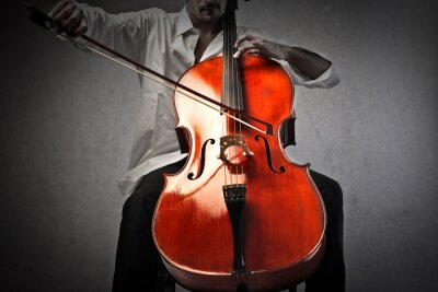 Fotomural Músico, tocando, violoncelo