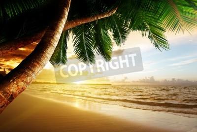Fotomural Nascer do sol na praia do Caribe