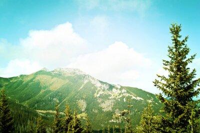Fotomural Natureza nas montanhas.