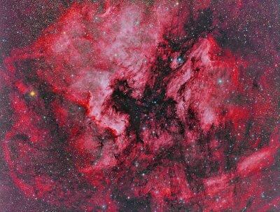 Fotomural NGC 7000 América do Norte Nebulosa imaged com um telescópio e uma câmera científica CCD