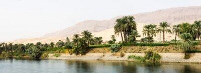 Fotomural Nilo costa na natureza