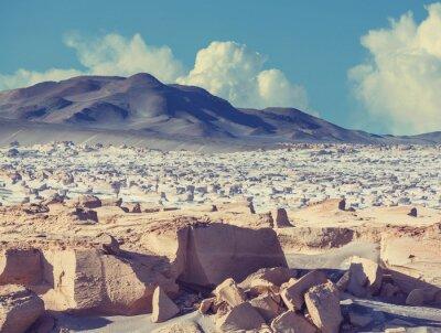 Fotomural Norte da Argentina