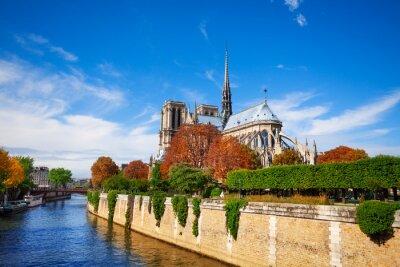 Fotomural Notre Dame de Paris ao longo do rio Sena