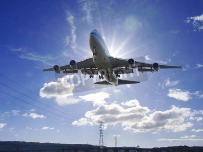 Fotomural O avião descola