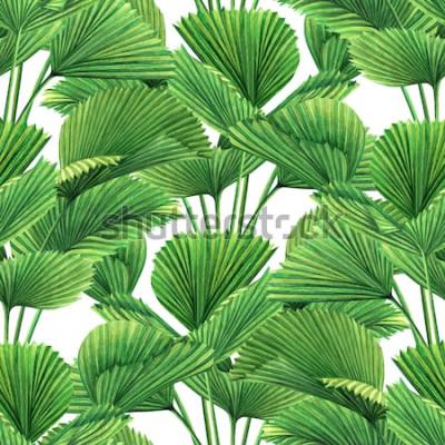 Fotomural O coco da pintura da aquarela, folha de palmeira, verde deixa o fundo sem emenda do teste padrão A folha exótica tropical tirada mão da ilustração da aquarela imprime para o papel de parede, teste pad