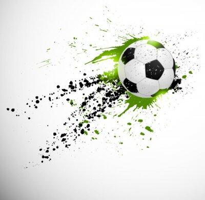 Fotomural O projeto do futebol