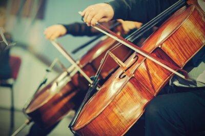 Fotomural Orquestra sinfônica no palco, as mãos que jogam o violoncelo