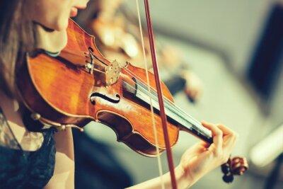 Fotomural Orquestra sinfônica no palco, as mãos tocando violino