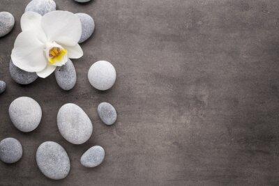 Fotomural Orquídea branca e spa pedras no fundo cinzento.