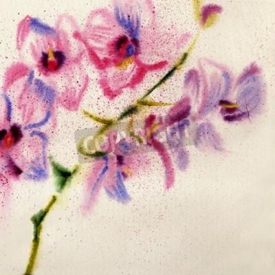 Fotomural Orquídea de aquarela bonita