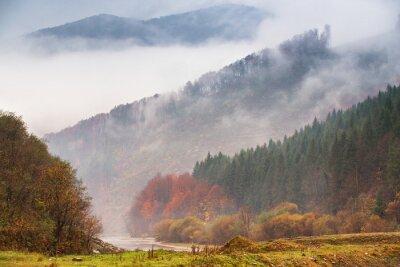 Fotomural Outono chuva e neblina nas montanhas. Fundo colorido da floresta do outono