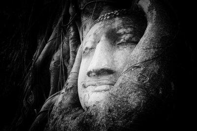 Fotomural Pacífico, tranquilo, rosto, Buddha, esculpido, antiga, pedra