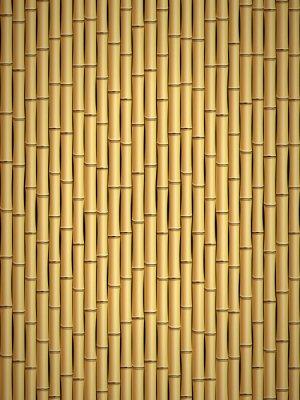 Fotomural Padrão de bambu