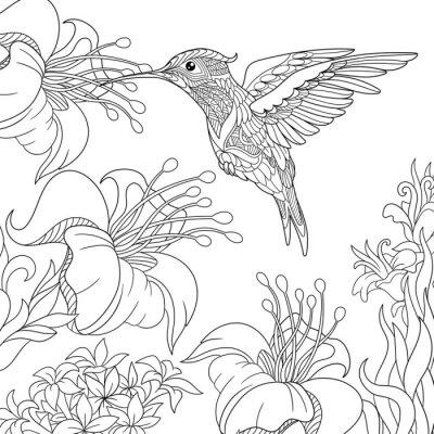 Pagina Para Colorir De Flores De Colibri E Hibisco Desenho De