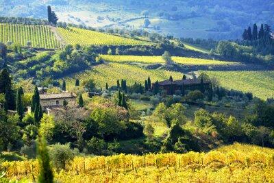 Fotomural Paisagem, Chianti, região, Tuscany, Itália