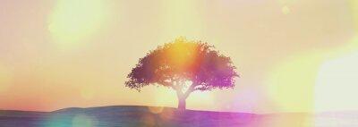 Fotomural Paisagem Widescreen da árvore do por do sol com efeito retro