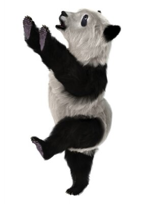 Fotomural Panda Cria de urso