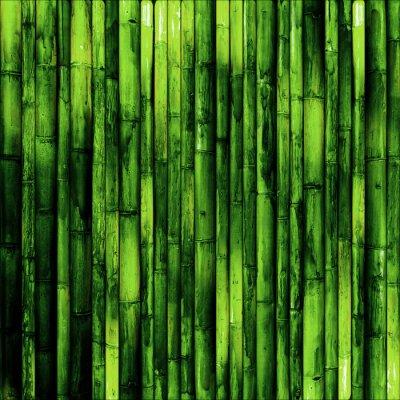Fotomural Parede de bambu
