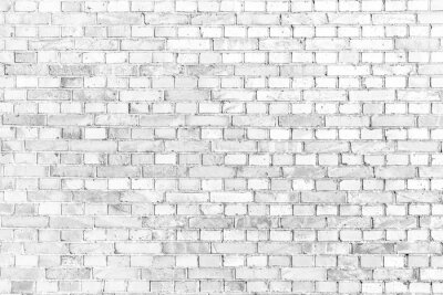 Fotomural Parede de tijolo branca