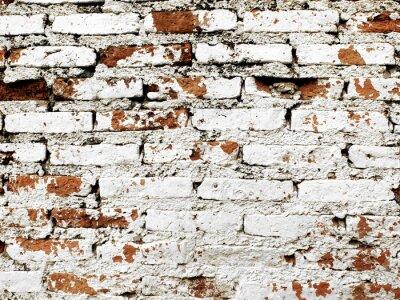Fotomural Parede de tijolo velho