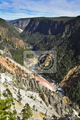 Fotomural Parque nacional Woody canyon em Yellowstone