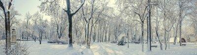 Fotomural Parque público da Europa com árvores e galhos cobertos de neve e gelo, bancos, poste de luz, paisagem.