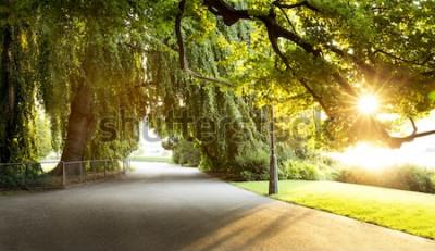 Fotomural Passeio em um belo parque da cidade