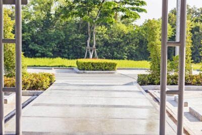 Fotomural Passo concreto Caminho em um jardim verde pacífica