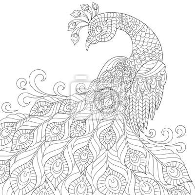Pavao Decorativo Adulto Anti Stress Para Colorir Desenho