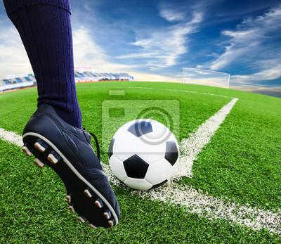 75fd20cf16 Pé chutar a bola de futebol fotomural • fotomurais rede