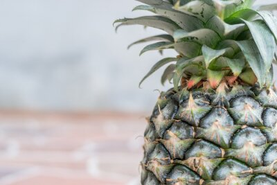 Fotomural Pineapple on stone floor tiles