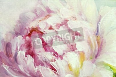 Fotomural Pink and white peony background. Oil painting floral texture