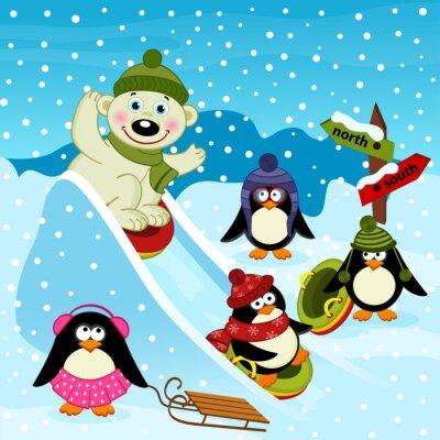 Fotomural Polar, urso, pingüim, gelo, corrediça, vetorial, Ilustração, EPS