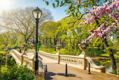 Fotomural Ponte em arco no Central park em dia ensolarado de primavera, Nova York