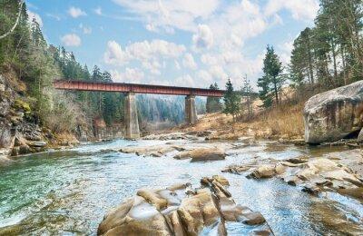 Fotomural Ponte sobre o rio montanha