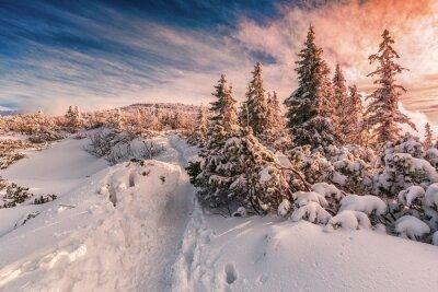 Fotomural por do sol do inverno no Beskids Mountains