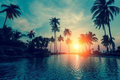 Fotomural Por do sol fantástico, palmeiras na praia tropical.