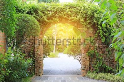 Fotomural Portão de entrada de arco de pedra coberto de Hera. Arco para o parque com luz solar.
