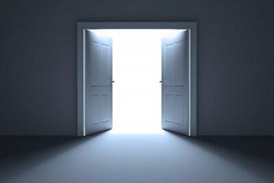 Fotomural Portas abertas