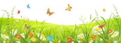 Fotomural Prado floral do verão ou da mola com grama verde, flores e borboletas