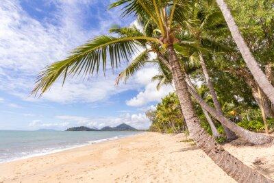 Fotomural Praia do Caribe
