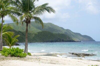 Fotomural Praia e Montanhas em St. Croix